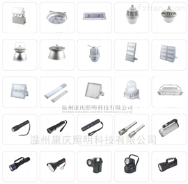 NFC9760-L105LED投光灯/LED泛光灯 LED105W壁灯