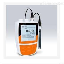M286181便携式pH/溶解氧仪 中西器材DTK3-Bante903P