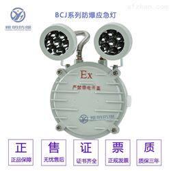 HR-ZFZD-E6W120minExdIICT6防爆消防应急灯