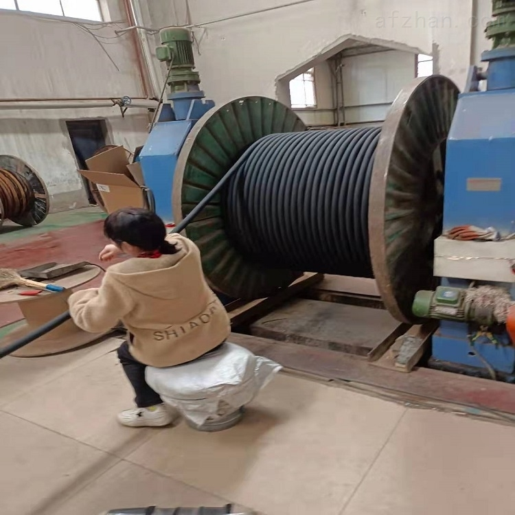 JHS5*10 JHS潜水泵国标电缆