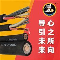 YCW国标橡套软电缆450/750V-3*120+1*50