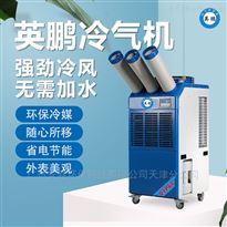 YBLQ-5.5三管单相防爆冷气机