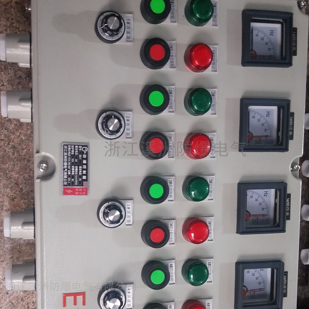 防爆仪表变频调整电控箱