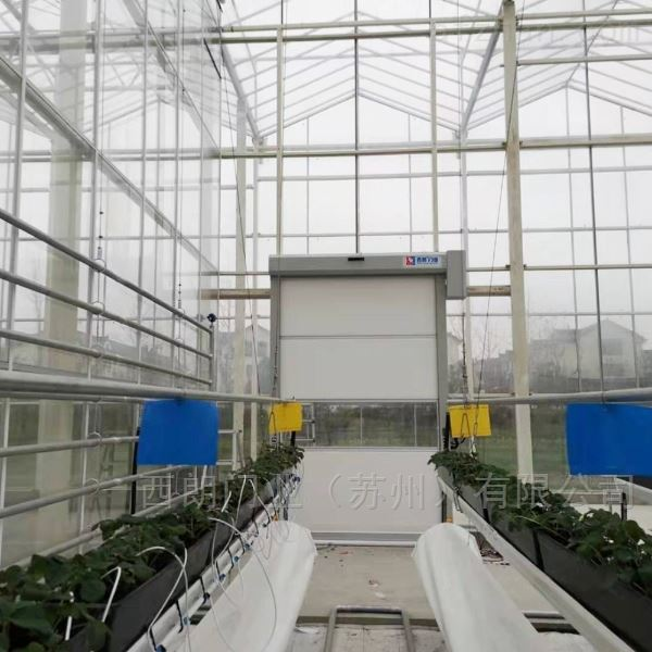 嘉兴蔬菜植物培育大棚智能快速卷帘门