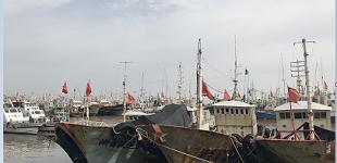 科技加码海上安全 赋能航运强国扬帆起航
