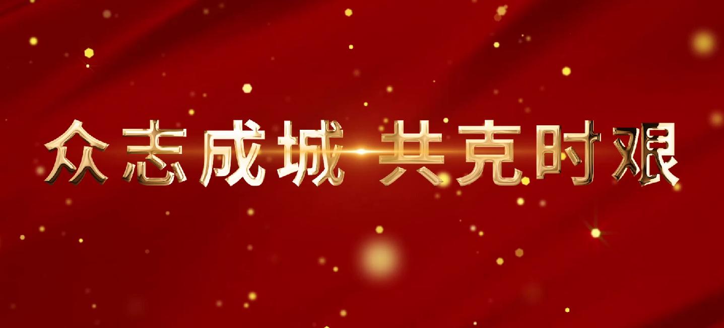 凡人亦英雄-2020湖北安防抗疫宣传片