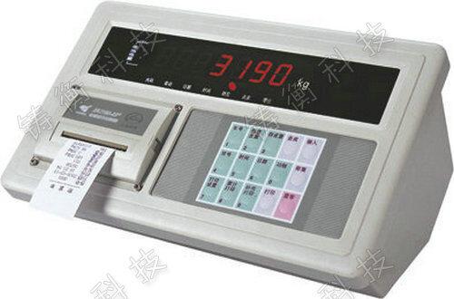 XK3190-A9+P仪表