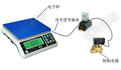 开关量信号输出电子计重秤